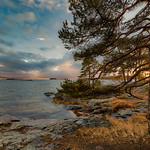 Golden Hour at Kallahti thumbnail