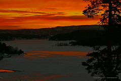 Sunrise 8 (Leifskandsen) Tags: sunrise oslofjorden ice winter bay norway nature landscape sandvika bærum trees camera leica living leifskandsen skandsenimages scandinavia skandsen coast