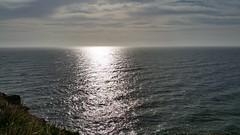 the pacific ocean east coast aus (aus.) Tags: grantsheadland pacificocean clifftop sunrise portmacquarie northhaven nswnorthcoast