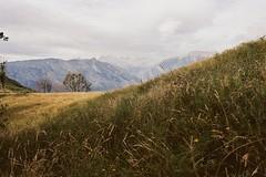 (Rastislav Durica) Tags: film analog kodakgold200 canoneos500n landscape paysage spain lospicosdeeuropa