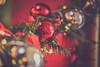Happy Christmas (Ayeshadows) Tags: macro monday bokeh christmas
