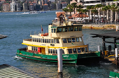 2017 Highlights, September, arrivals and departures at Circular Quay as ferries retire and enter service (john cowper) Tags: sydneyferries circularquay sydneycove sydneyharbour arrivals departures supply transportfornsw sydney newsouthwales