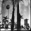 ( Time waves particles kept on delivering the light ) (Wandering Dom) Tags: street urban water tower trees palms humans winter california people existence life reality dreams earth multiverse time waves particles delivering light roam wandering