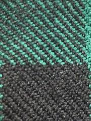 "Green and Black (hp349) Tags: 7dwf ""crazytuesdaytheme"" greenblack"