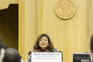 Maria Helena Semedo, Deputy Director-General, Climate and Natural Resources, FAO