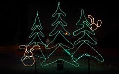 O Tannenbaum (Anthony Mark Images) Tags: decorations christmasdecoration christmas holidaydecorations christmastree rabbits evergreen light display art lights green greenlights festive waterloopark waterloo ontario canada otannenbaum sundaylights christmasspirit flickrclickx
