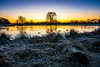 Sunrise in Bushy Park (ed027) Tags: ifttt 500px yellow park duck sunrise fog lake sunset water cold river blue sun twilight log colour orange snow wood pond ice dawn frost scenics dusk colourful idyllic riverbank lone tree leading line standing
