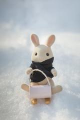 sledding (auntneecey) Tags: sledding toys playing 365the2017edition 3652017 day361365 27dec17