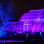 Christmas at Kew (The Palm House) thumbnail