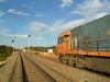 Kalgoorlie and the TAR in 2005 (Cris Fitzhardinge Aka CrisFitz) Tags: tar national rail nr railway south spur desert trans australian