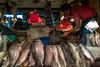 Gulshan Market (Hiro_A) Tags: gulshan gulshan2 dhaka bangladesh asia market wetmarket fish fishmonger people sony rx100m3
