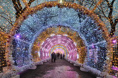 Inside the Light Tunnel on Tverskoy Boulevard - Magic of Moscow (Guide, driver and photographer in Moscow, Russia) Tags: christmas christmaslights journeytochristmas lightinstallations lighttunnel magicofmoscow moscow newyear russia tverskoyboulevard magic ru