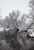 Photographed by Barabanov Alexey 2017 (valmar20051) Tags: река вода закат рассвет липецк россия лошади лебеди