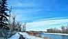 365-4-7 Bow River Pathway views (benlarhome) Tags: canada alberta calgary bowriver