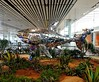 Singapore Changi Airport Terminal 4 is a newly built passenger terminal building at Singapore Changi Airport. #changiairport #changiairportt4 #Singapore #goodday #ilovephotography #photooftheday #instasg #visitsingapore #insta360air #panoramiccamera #360° (Edmund @ Shoot SGP) Tags: insta360air singapore vrcamera visitsingapore changiairport lifeallin ilovephotography goodday panoramiccamera changiairportt4 instasg photooftheday 360
