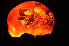 IMG_6421 (comtrag) Tags: jackolanterns rogerwilliamszoo rhodeisland halloween pumpkins pumpkincarving