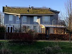 De Buitenkans (Nieuwe schoenen; ik ben er weer) Tags: debuitenkans almerebuiten kleurrijk rudolfsteiner organischearchitectuurmetveelschuinelijnen dakenmetsedumbeplanting zonneenergie