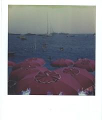 (Brutemus) Tags: italy impossibleproject polaroid polaroidoriginals polaroid600 sx70sonar sx70 600film filmphotography