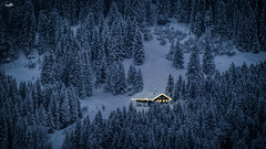 Somewhere in the Allgäu Alps (VandenBerge Photography (On/off ....but mostly off) Tags: allgäu bavaria germany winter snow mountain farmhouse lights trees forest season lonelyplanet landscape winterscape canon