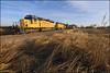 UP 1561 (Justin Hardecopf) Tags: up unionpacific 1561 emd sd402 sd40n local manifest mead nebraska railroad train