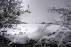 Through the Barbed Wire (nigdawphotography) Tags: snow weather view barbedwire lattoncommon harlow essex