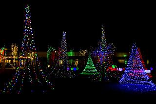 Christmas Light Garden [Explore]