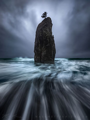 FAREWELL AT RIALTO (Mark Metternich) Tags: ngc