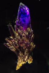Amethyst (Ellsasha) Tags: amethyst gems quartz houstonmuseumofnaturalscience houston museum stones