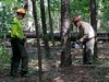 Mark Tanner (left) and Jeff Myers (right), sawyers with the U.S. Forest Service, cutting southern pine beetle-invested trees (USDAgov) Tags: forestservice forestry forestrestoration southernpinebeetle mississippi
