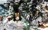 Joyeux Noël, Merry Christmas ! (Michele*mp) Tags: europe france christmas noël merrychristmas joyeuxnoël bonnadal buonnatale feliznavidad froheweihnachten glædeligjul godjul schéikrëschtdeeg wesołychświąt zaligekerst michelemp nadoligllawen craciunfericit