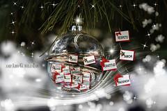 Navidad 2017 - Amparo García Iglesias (Amparo Garcia Iglesias) Tags: foto articulo revista grada navidad 2017 reflexión balance sueños amparo garcia iglesias photos