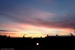 [ Human light, keep growing... ] (Chris Séhenna) Tags: ciel sky cielo nuages clouds nube crépuscule sunset puestadelsol lampadaire floorlamp lámparadepie silhouette silueta