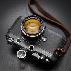 Canon 50mm f/1.4 ltm on Bessa T 101 (CorgiHouse) Tags: bessat canon50mmf14ltm