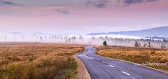 Road to fog (Ioan Todor. Photography's) Tags: fog misty way mountains hills poles forest trees spruces sky sunset sunrise romania transylvania ardeal eastern europe visit ecoturism turism colors fall season autumn dashed
