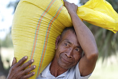 Rice Bag Carrier (fredMin) Tags: bag rice carrying travel portrait asia cambodia kampot people fujifilm xt1 56mm
