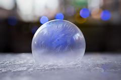 BlueBubble-3