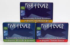 sardines x 3 2 (OrganicoRealfoods) Tags: fish productshot sardines oliveoil sunfloweroil tomatosauce uk english