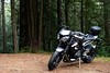 Sometimes it's a little better to travel than to arrive (JonBauer) Tags: 2018triumphstreettriplers motorcycle sportbike mounttamalpais redwoodtrees sequoioideae sequoia nikon d800 2470mmf28g
