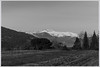 M9-1049816 (Giacomo Pagani) Tags: giacomo pagani giacomopagani leica camera ag m9 full frame ccd rangefinder telemetro 2017 summicron 90 mm f2 leitz vintage