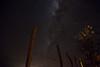 Via Láctea no Sertão (Luciano_Alves_Foto) Tags: blue vialáctea estrelas milkway stars noite universo galáxia cerca sertão campo árvore
