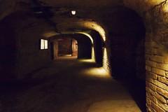 Im Felsenkeller in Nürnberg