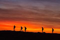 Five go on the rocks (Explore) (babs pix) Tags: silhouette tywyngwynedd tywynbeach tywynseafront sunset snowdonia snowdoniamountainsandcoast gwynedd cardiganbay westwales wales coastwales coast walescoastalpath five