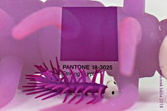 PANTONE 18-3025 STRIKING PURPLE (Anne-Miek Bibbe) Tags: canoneosm annemiekbibbe bibbe nederland 2018 pantone kleuren kleur color colors kaarten ansichtkaarten postcards pantone183025 strikingpurple paars violet lila viola purple púrpura doubleexposure