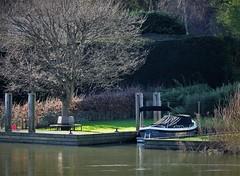 Streatley. Berkshire, UK (standhisround) Tags: benchmonday bench seat berkshire england uk river riverthames garden trees boat water thames streatley