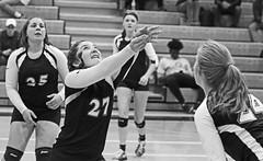 IMG_1077 (SJH Foto) Tags: girls volleyball high school lancaster mennonite littlestown hs team