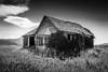 Abandoned School (jpmiss) Tags: usa ruin jpmiss 1635mm travel old bw 6d noiretblanc abandonedschool swanvalley blackandwhite nb canon idaho étatsunis us