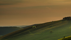 Pewsey-170614-6140132.jpg (mike_reid.5710) Tags: england downs pewsey