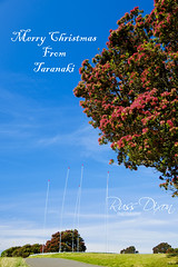 Taranaki Christmas (Russ Dixon Photography) Tags: russdixon russdixonphotography taranaki newzealand newplymouth christmas