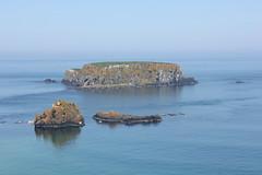 IMG_3682 (avsfan1321) Tags: ireland northernireland unitedkingdom uk countyantrim ballycastle carrickarede carrickarederopebridge nationaltrust landscape green blue ocean atlanticocean island