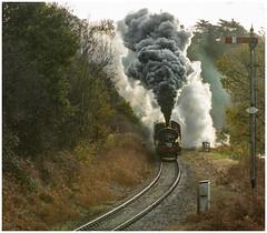 813 (Rob-33) Tags: 813 svr severnvalleyrailway steamrailway steampreservation steamlocomotive tamron70200f28 tankengine tanklocomotive gwr greatwesternrailway pentaxk3 uksteam